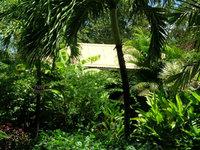 Cases Créoles de Gwo Caillou • éco-Tourisme • BOUILLANTE