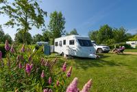Camping de l'Etang • éco-Tourisme • BRISSAC QUINCE (1)