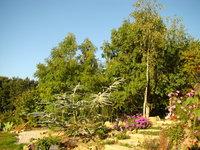 Camping de la Fontaine du Hallate • éco-Tourisme • PLOUGOUMELEN