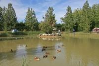 Domaine Le Jardin du Marais • éco-Tourisme • LE PERRIER