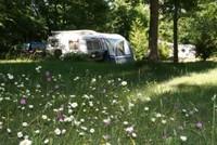 Camping Au Bois Joli • éco-Tourisme • ANDRYES