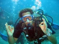 ANSE CARAIBE PLONGEE • éco-Tourisme • POINTE NOIRE (3)
