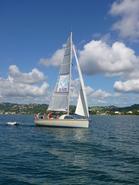 Dénébola - Les plaisirs nautiques • éco-Tourisme • LE ROBERT (2)
