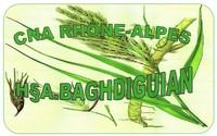 Arthur Baghdiguian • naturopathe • NIEVROZ