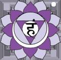 Lakshman Attygalage • yoga • PARIS 11EME ARRONDISSEMENT