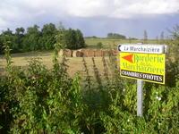 Borderie de la Marchaizière • éco-Tourisme • ST ETIENNE DU BOIS (3)