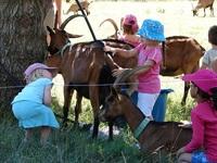 Le Viel Audon • éco-Tourisme • BALAZUC (1)