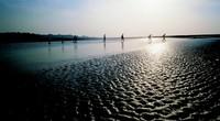 Promenade en Baie • éco-Tourisme • LE CROTOY