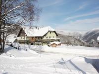 Auberge Les 4 Saisons ** • éco-Tourisme • KRUTH (1)