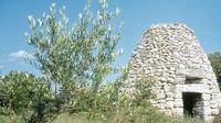 Best Western Nîmotel • éco-Tourisme • NIMES (2)