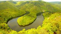 les gites du berger • éco-Tourisme • ST GEORGES DE MONS (3)