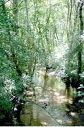 la ferme-nature • éco-Tourisme • CAPTIEUX (2)